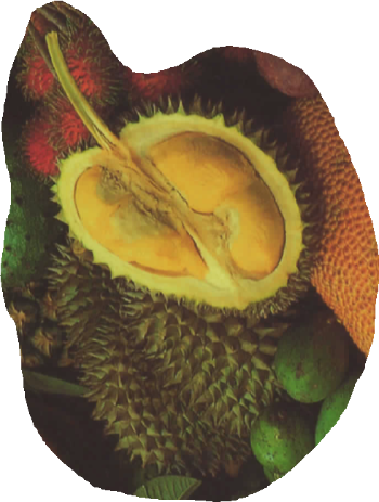 durians Avatar